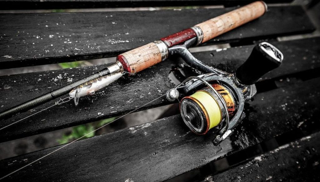 best spinning reels for bass